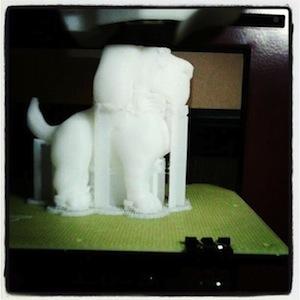 Dog Build