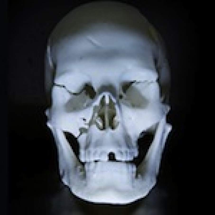 Richard III 3D printed