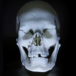 Richard III 3D printed
