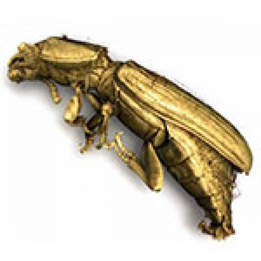 3D Printed Supersized Titanium Bugs