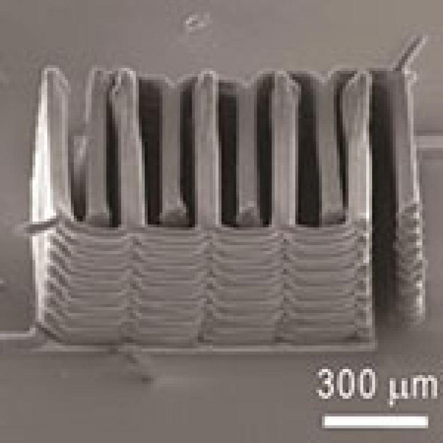 3D Printing Tiny