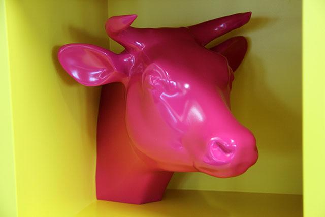 Cowbox  by Thomas Cornelis