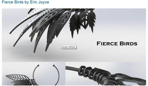 Fierce Birds by Erin Joyce