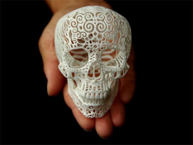 Crania Anatomica by Josh Harker