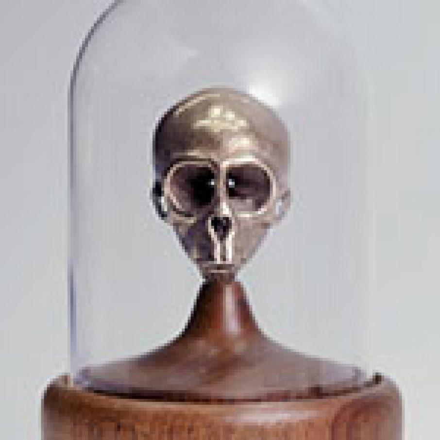 3D Printed monkey skull