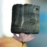 flower graphene
