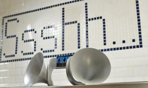 Shhh Gramohorn II 3D Printed Acoustic Speaker