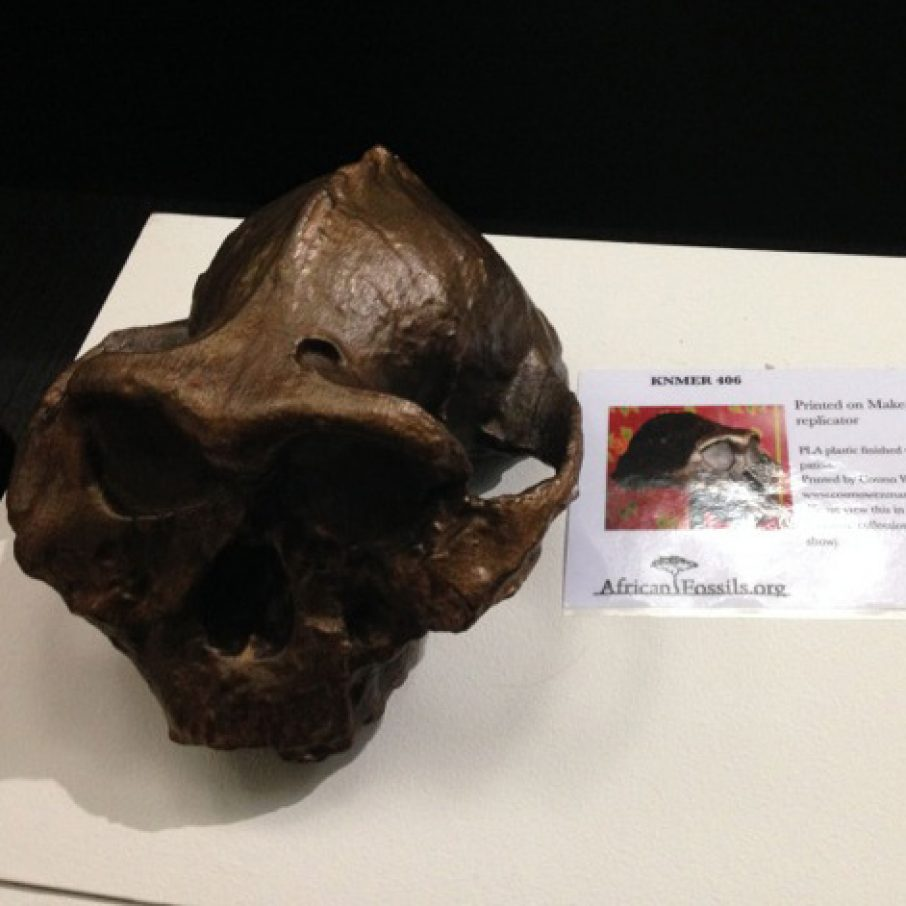 african fossil my photo from 3dprintshow