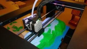 Fossil Fish 3D Printing