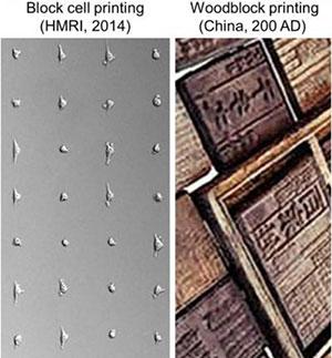 3D Block Cell Printing Woodblock Printing