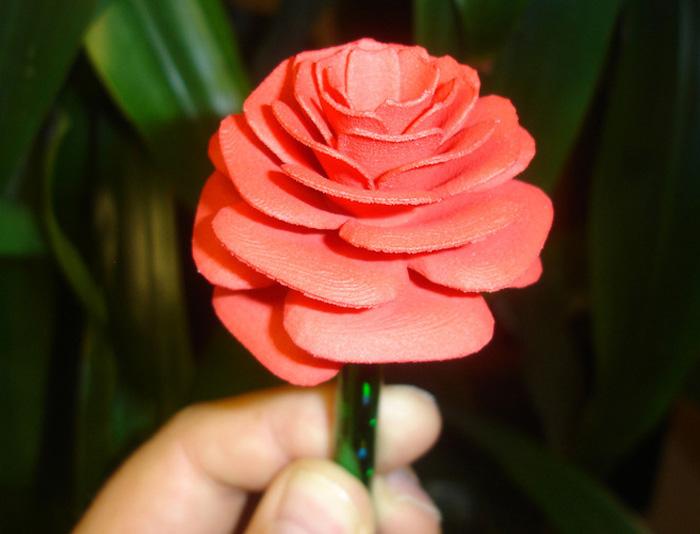 rose Paul Mylander 3D Printing Math Art