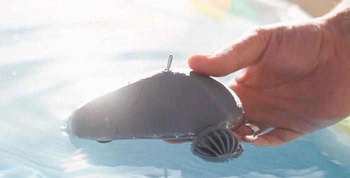 3D printed ziphius