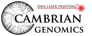 Cambrian Genomic DNA Laser Printing