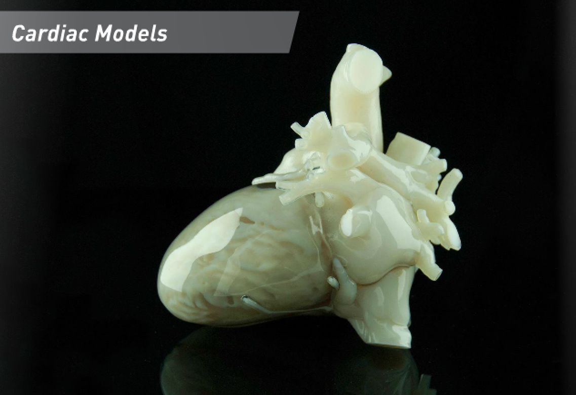 12 Things We Can 3D Print in Medicine - 3D Printing Industry