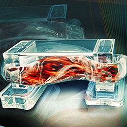 3D Printed Bio-Bots Use Mouse Muscle to Move
