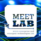 Meet MEET Lab & Consider Their Survey