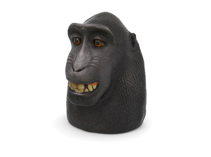 3D printed monkey selfie copyright