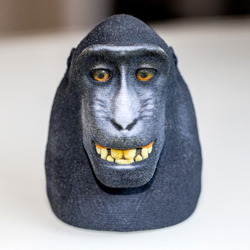 3D printed monkey selfie