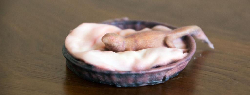 9 shante 3D print
