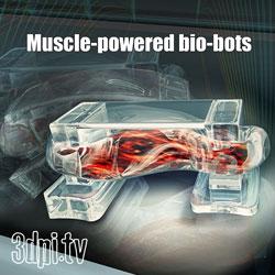 3D Printed Bio-Bots