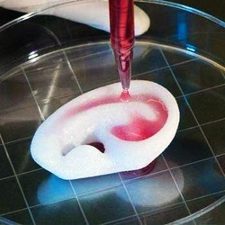 Two Commercially Available 3D Bioprinters, Courtesy of Swansea University