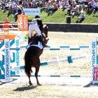 3D Printed Horse Jump Takes First Place at the Zoetis $1 Million Grand Prix