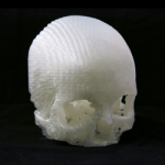 3D printed skull of shavuan from mike balzer