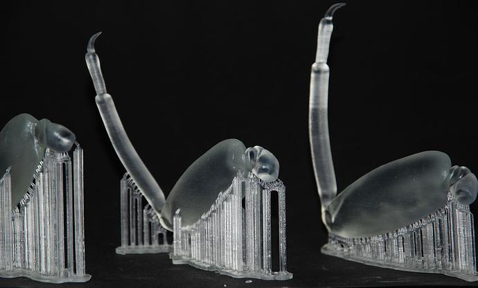 3d printing formlabs kklaus legs