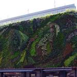 plant mural 3d printing