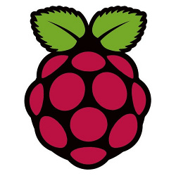 raspberry pi logo 3d printing industry feature