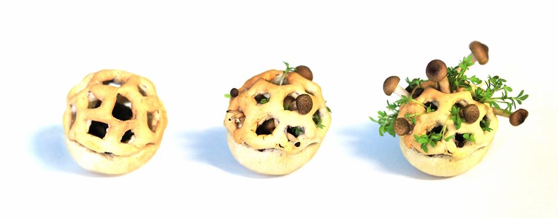 Edible Growth Puts The Fun In D Printed Fungus Food D Printing - 3d printed edible food grows eat