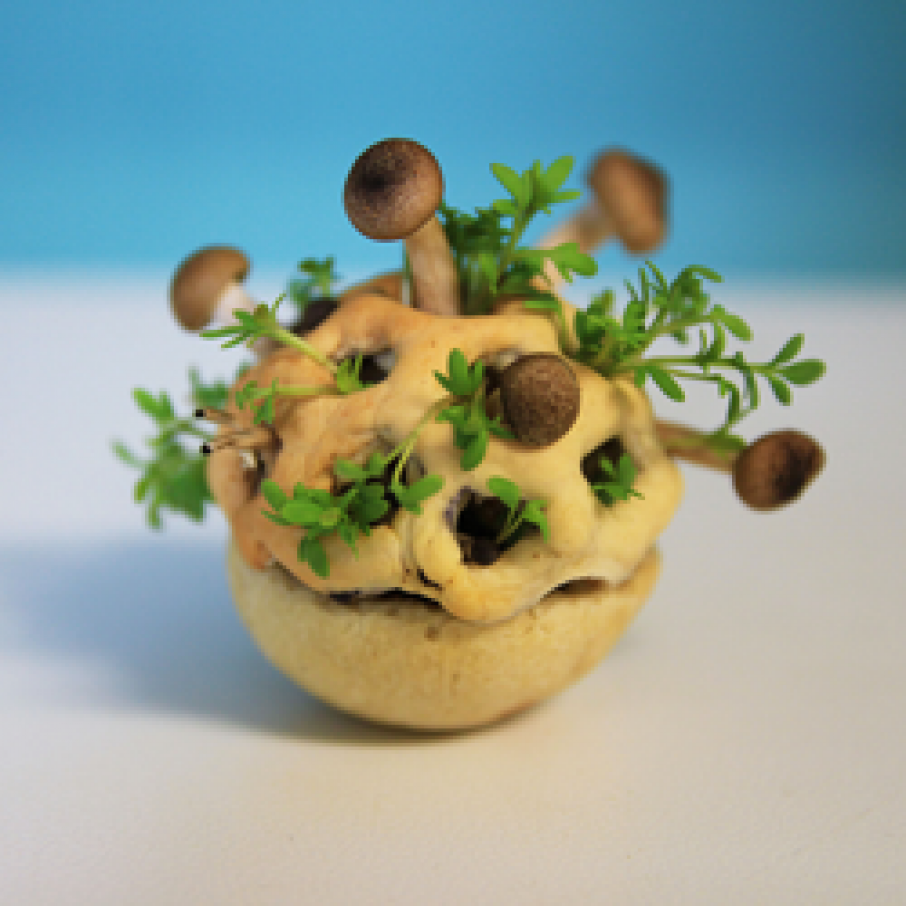 3D printed spore food from TNO
