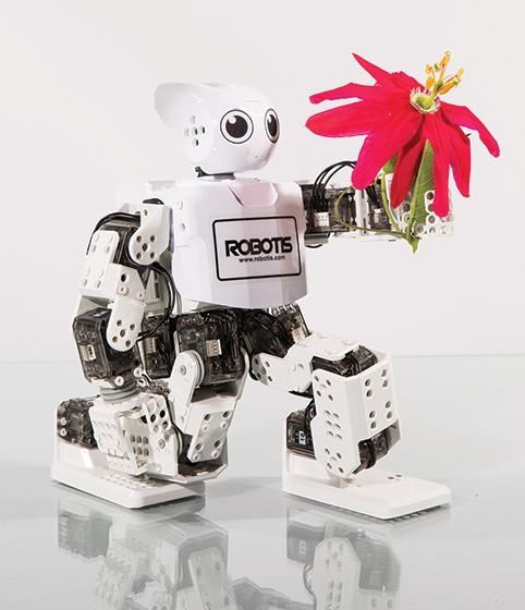 3d printed robots darwin mini