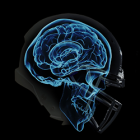 Researchers at UCLA Create New 3D Printed Lattice To Help Protect NFL Players from Concussions, CET, Dementia & Suicide