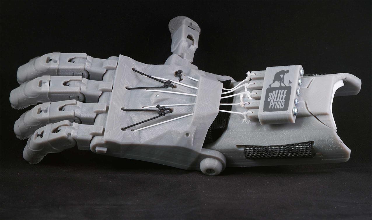 raptor model 3d life prints