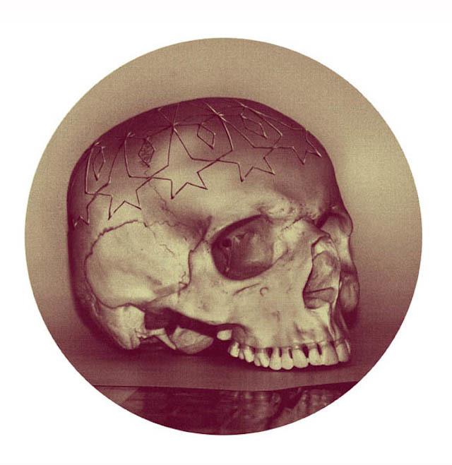 skull Lee Wagstaff  3d printing