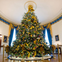 whitehouse tree 3d printing industry feature