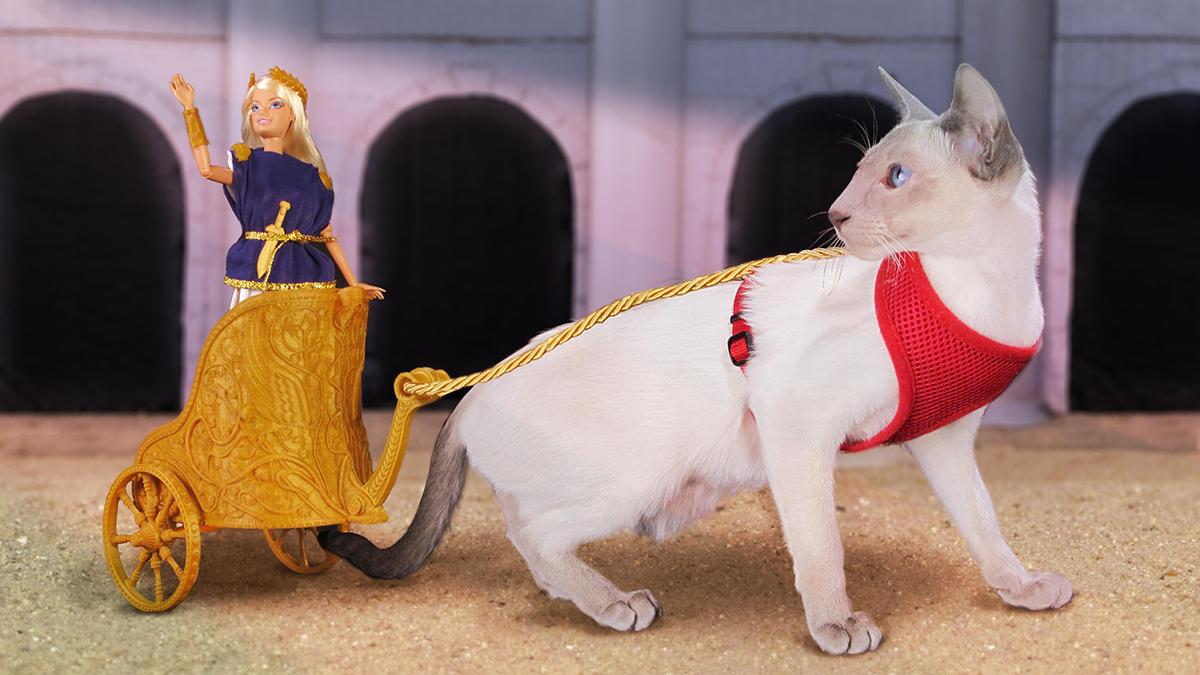 3d printed barbie_chariot w/ kitten