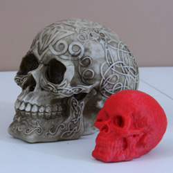 big skull little skull atlas 3d scanning