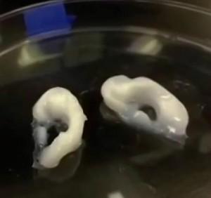 biobots low cost 3D bioprinter at SXSW