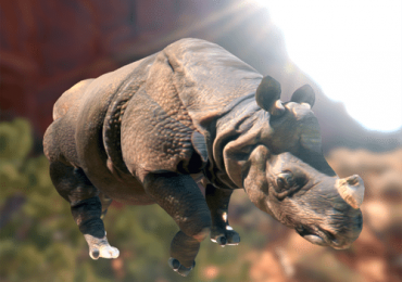 feature indian rhino free 3D printable from sketchfab