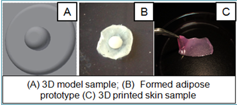 tevido 3D printed nipple research