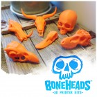 Boneheads 2 – 3D Printed Skulls for Your Desktop Printer