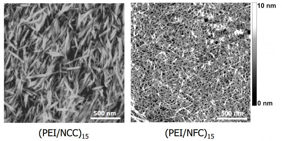 nanocellulose-crystalline-fibril