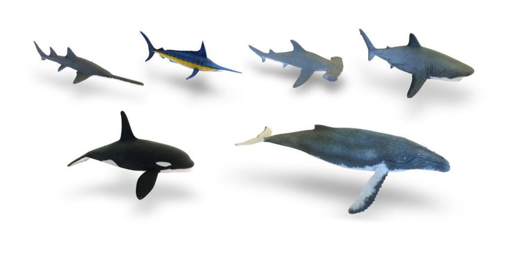 3D Hubs and TurboSquid 3D print sharks for sharkweek