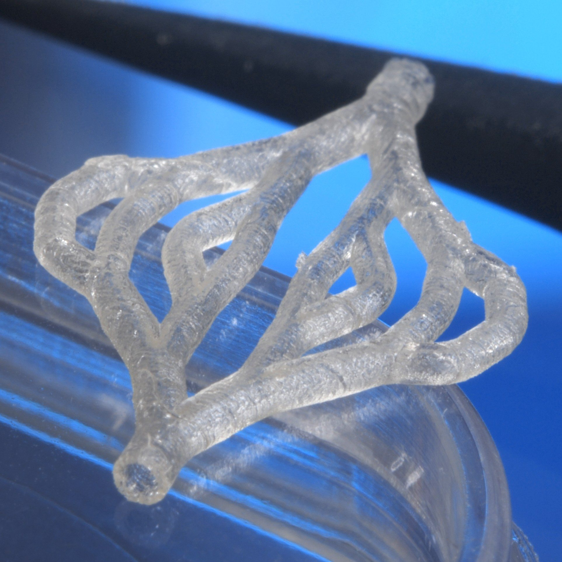 Fraunhofer S 3d Bioprinted Blood Vessels 3d Printing