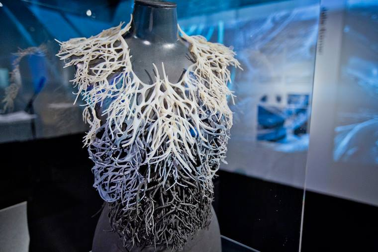 Sporophyte Collection 3D printed kelp jacket