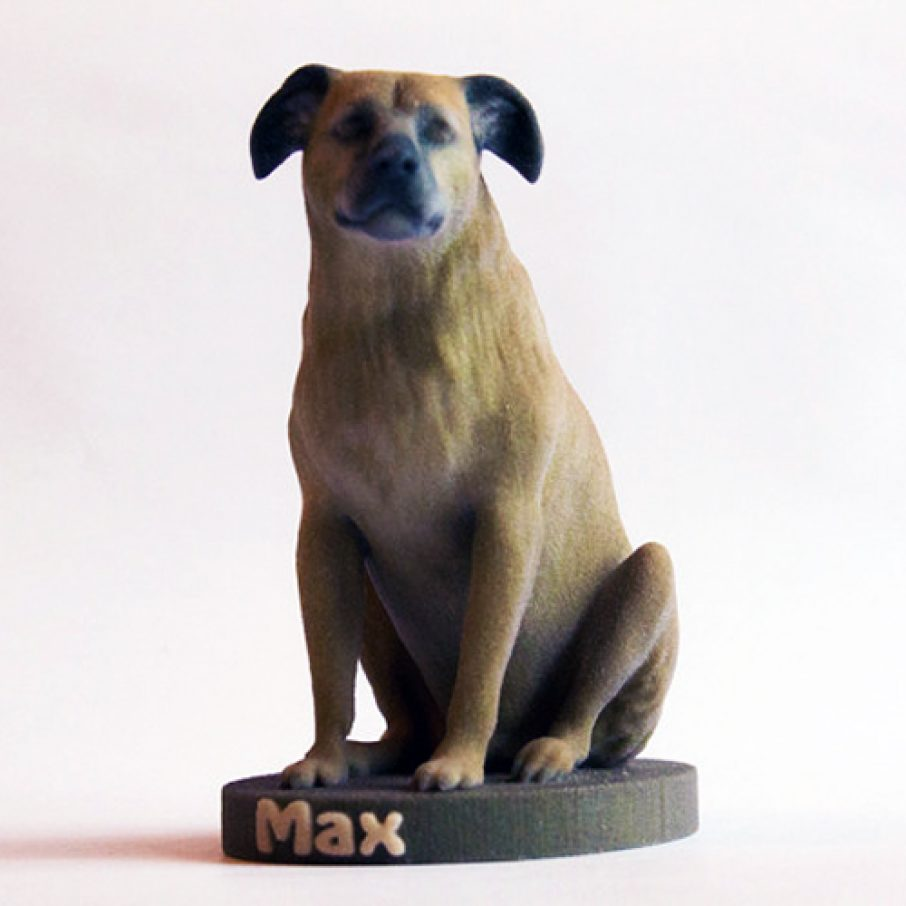 Who Doesn't Want A 3D Printed Figure Of Their Pet?