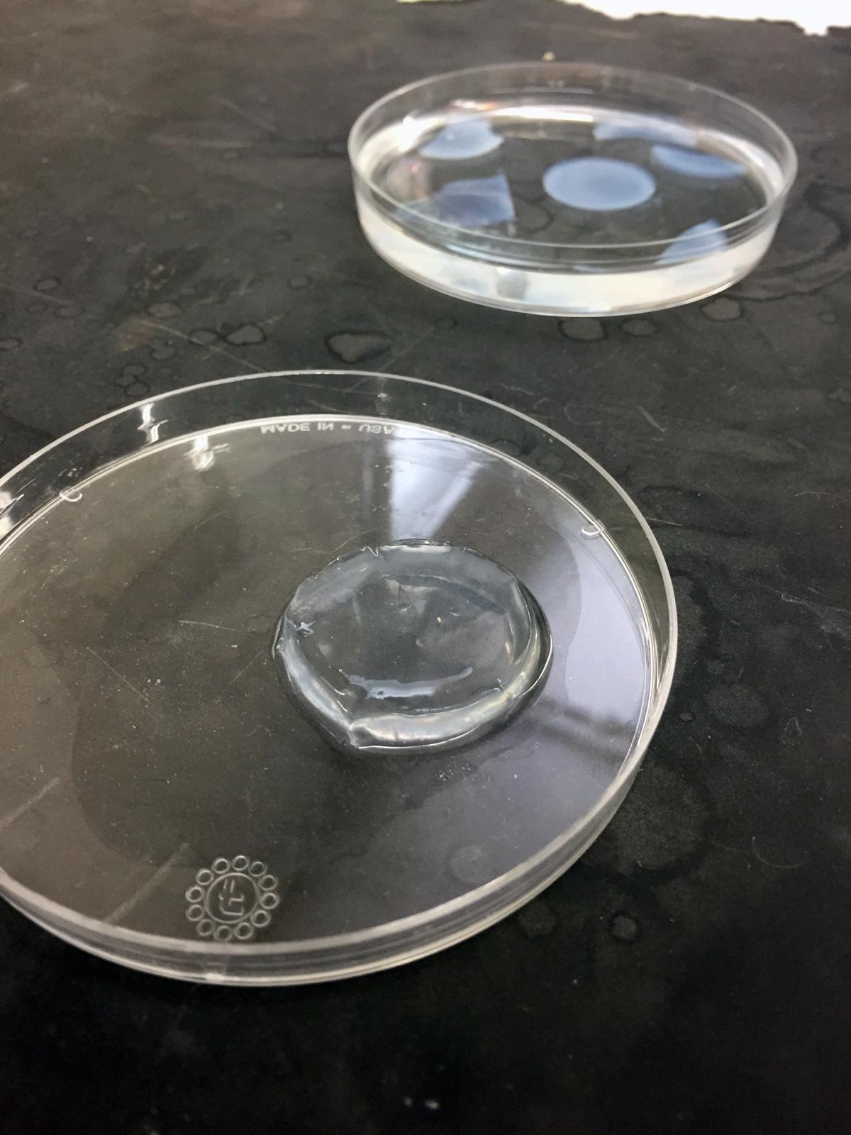 biobots 3D printed biomaterial at university of denver via The 3D Printing Store 3D printing industry