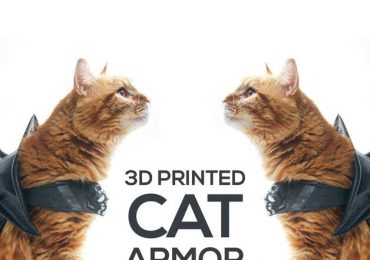 3D printed cat armor featuring cats